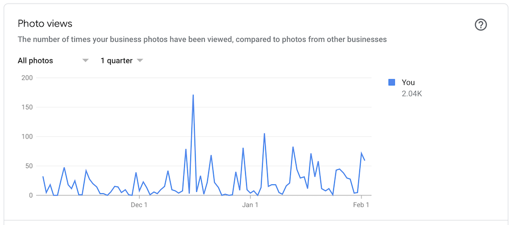 Google My Business Photo Views Example