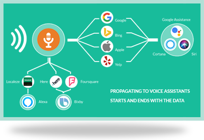 Voice Search Readiness for Local Businesses