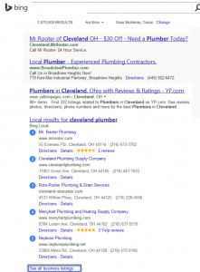 Bing Map Serps