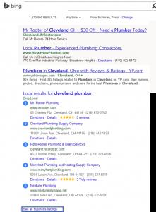 Bing Map Serps